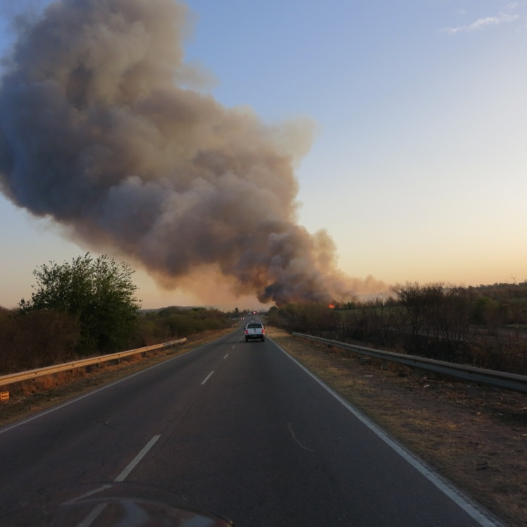 Incendio muy próximo a la cerretera